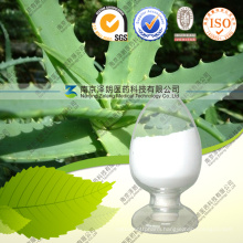 Natural Powder Aloe Vera Extract